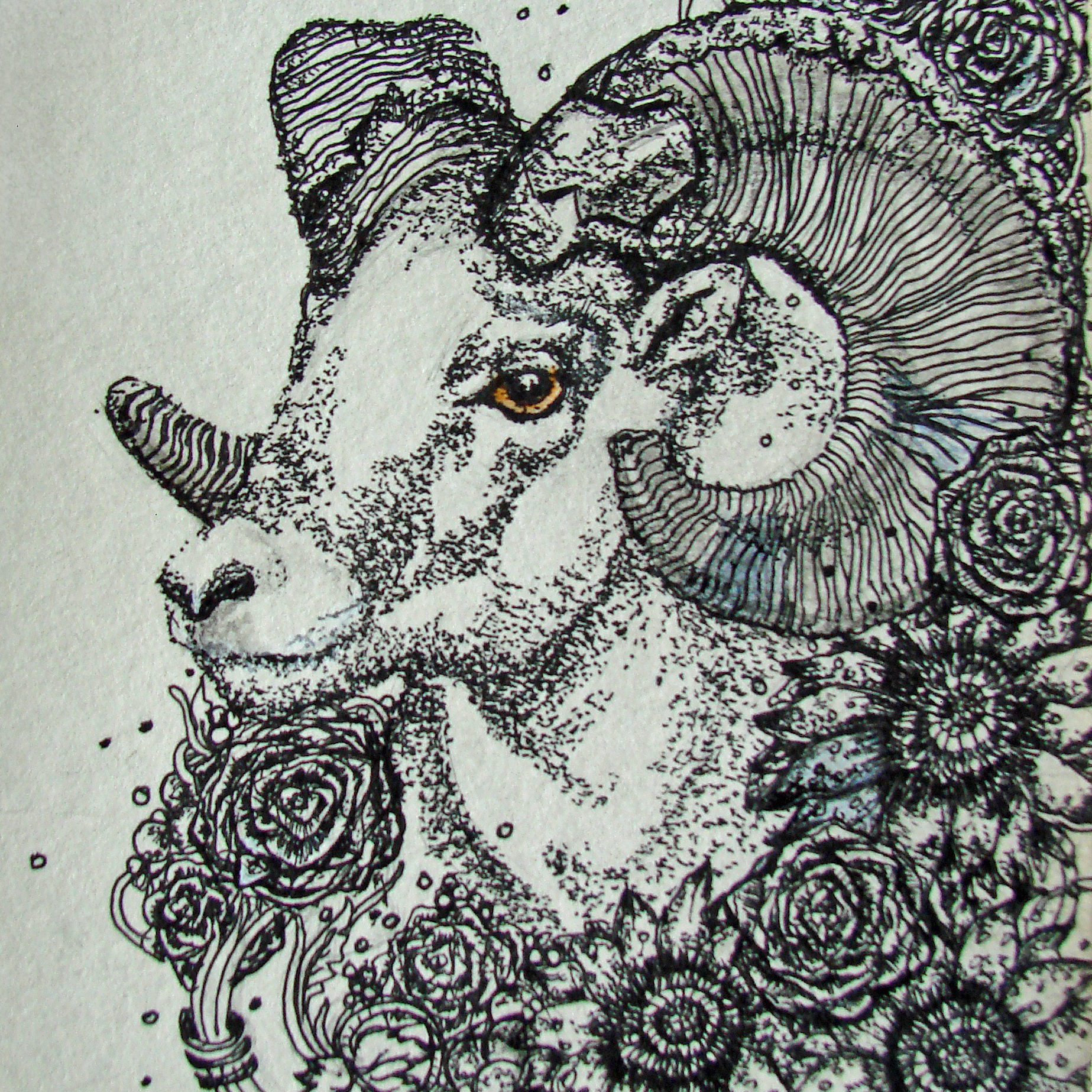 07 Chief Bighorn, 2016 Pen & Ink drawing
